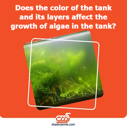 Does the color of the tank and its layers affect the growth of algae in the tank