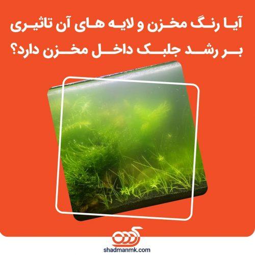 shadmanmk-20210907-0008